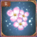シラズの精花【R】.png