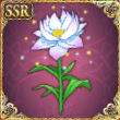 祝福の花.png